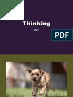 m29 Thinking Slides