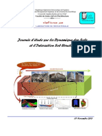 Journee_Etude_DDSISS_Resumes Elargis_Novembre 2013_Harichane.pdf