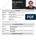 92-curriculum-vitae-machote.docx