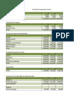 Estructura presupuesto de ventas