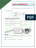 Término-Algebraico.doc