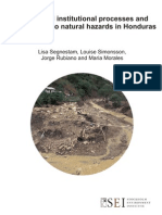 Cross-level institutional processes and vulnerability to natural hazards in Honduras