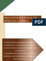 PRINCIPIOS RECTORES-18-ABRIL