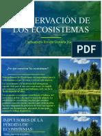 CONSERVACIÓN DE LOS ECOSISTEMAS