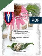 Informe Nº1-Valoracion microscopica de drogas pulverizadas (1)