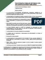 1 CONSTELAR LA ENFERMEDAD-1