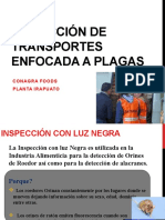 Inspección de Transportes enfocada a Plagas
