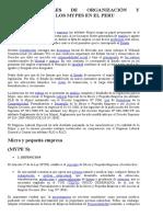 FORMAS LEGALES DE ORGANIZACIÓN Y CONSTITUCION DE LOS MYPES EN EL PERU