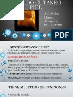 SENTIDO CUTANEO DIAPOSITIVAS FIORELLA.pdf