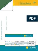 ANEXO 16. Programa de induccion y reinduccion en SST.docx