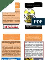 diptico legis.docx