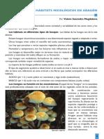 Biodiversidad y Hábitats