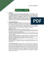 Elemento 1-PCGE
