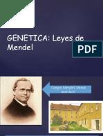 Clase genetica 2020.pdf