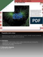 Mitosis y meiosis 2020.pdf