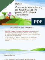 5° clase miercoles 24 de junio.pdf