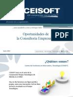 4. Oportunidades Consultoria Empresarial