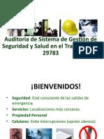 Auditoria del Sistema de Gestion de SST