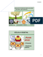 1 Stoa EXERCICIO 1-mapa conceitual, conceitos, inclusões celulares [Modo de Compatibilidade]