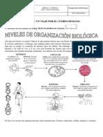 GUÍA N.4 cs naturales (impresa).pdf
