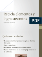 Sustratos (1).pptx