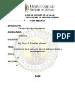 FORO TEMÁTICO- PIEL MECANISMO DE DEFENSA.