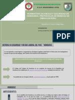 EXPOSICION DE HONDURAS Y PROTOCOLOS EN PERU MIRELLA MORALES BETETA CORREGIDO.pdf