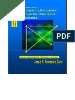 Formulacion y Evaluacion de Pro - Caro, Jorge Gonzalez (1)
