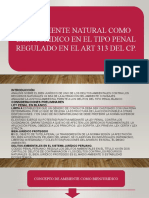 Ppt d Ambiental 1
