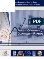 Analisis Coorporativo_Desarrollo y Finanzas