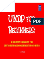 UNDP for Beginners