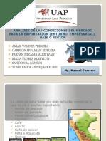 ANALISS DEL PERU (1).pptx