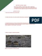 Breno - História.docx