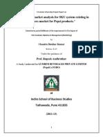 SIP final.pdf
