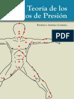 Teoria-de-los-puntos-de-presion