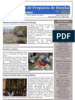 Newsletter nº 20
