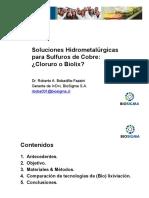 14. PRESENTACIÓN BOBADILLA ROBERTO - BIOSIGMA.pptx