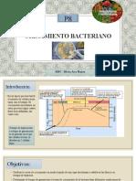 Lab 8_Crecimiento bacteriano.pptx