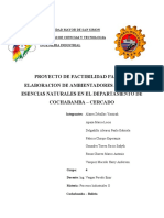 ESTUDIO DE FACTIBILIDAD DE AROMATIZANTE  NATUREX.docx
