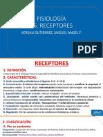 6 - Teoría - Vereau - Receptores
