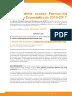 resumen_Convo_2017_MIR.pdf