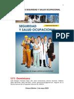 Manual SSO 2020