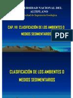 7. CAP. VII   AMBIENTES O MEDIOS SEDIMENTARIOS.pdf