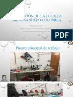 1.2 APLICACIÓN DE LA LCE a la empresa shelo.pptx