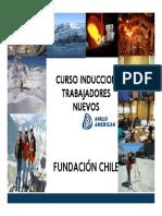 Fundación Chile.