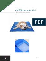 Produit Winner potentiel 2.pdf