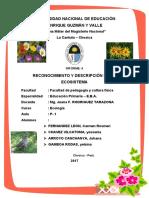 ecosistema (Autoguardado) para vemprimir.docx