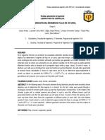 lab-hidraulica-1-1.docx
