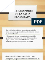 EL TRANSPORTE DE LA SAVIA ELABORADA