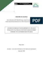 Memoire_de_Master_2_-_Remy_Tello.pdf
